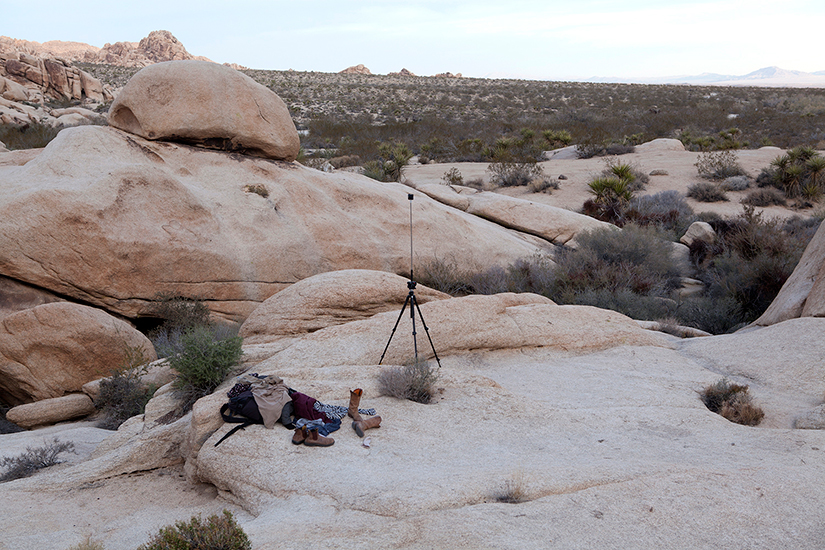 joshua tree behind the scenes
