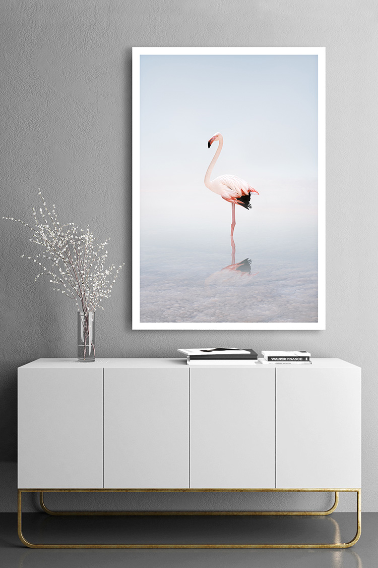 flamingo art photography